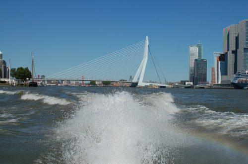 Erasmusbrug vanaf het water